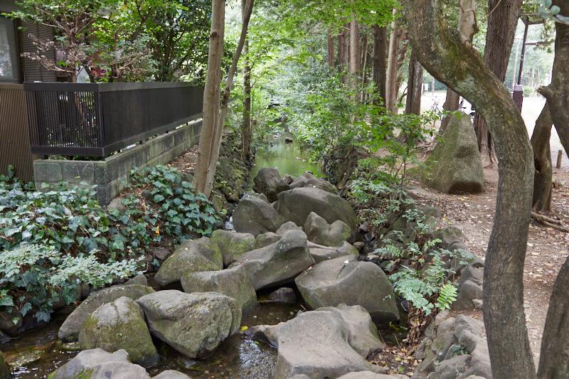 井の頭公園内の小川